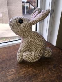 Brown bunny 2